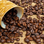 Cà phê mộc là gì? Cách chế biến và nhận biết cafe mộc