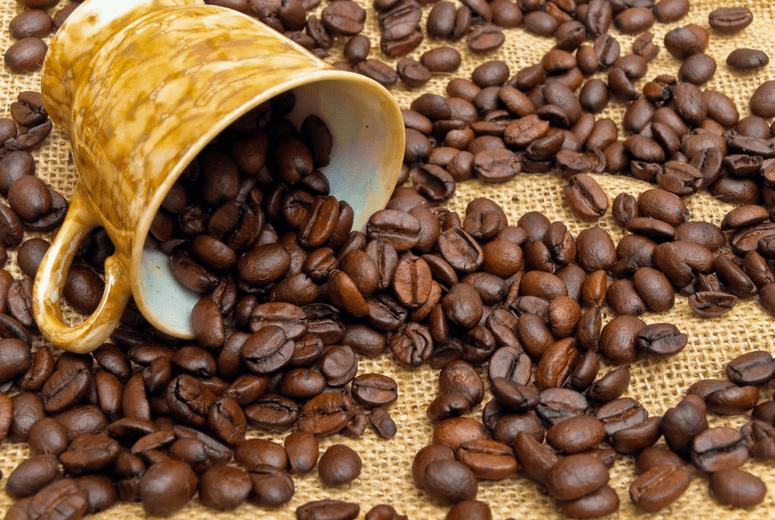 Cách chế biến cà phê mộc