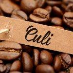 Cà phê Culi là gì? Tính chất cafe Culi như thế nào?